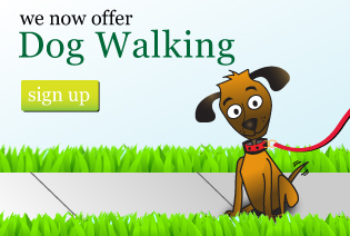 We offer Dog Walking