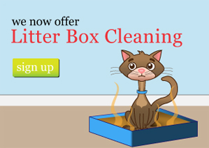 Cat Litter Box Cleaning