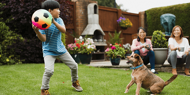Kid playing fetch with dog in yard
