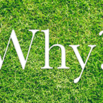"""Why?"" in grass"