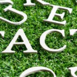 Wood alphabet in wording fact on artificial green grass background stock photo