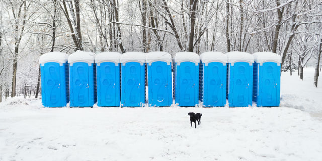Snow covered blue portable plastic bio toilets with black dog on foreground in a park at winter