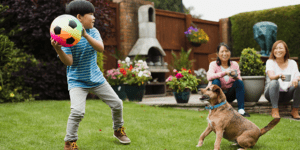 Boy playing in the yard with his dog footloose and worry-free as a result of Boulder Pooper Scooper Service POOP 911