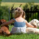Dogs and kids blog article featuring little girl and her dogs hanging out together in the yard.